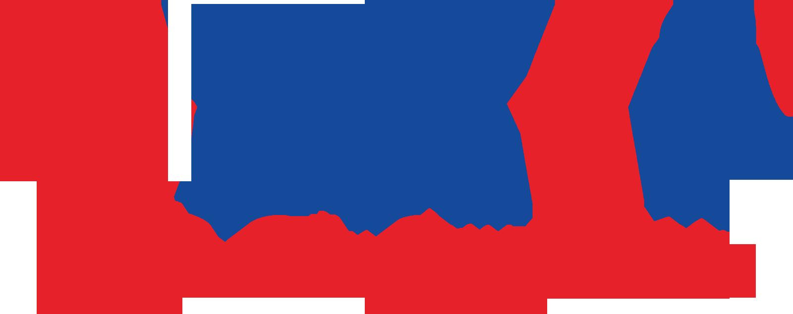 Image result for logo tiki png